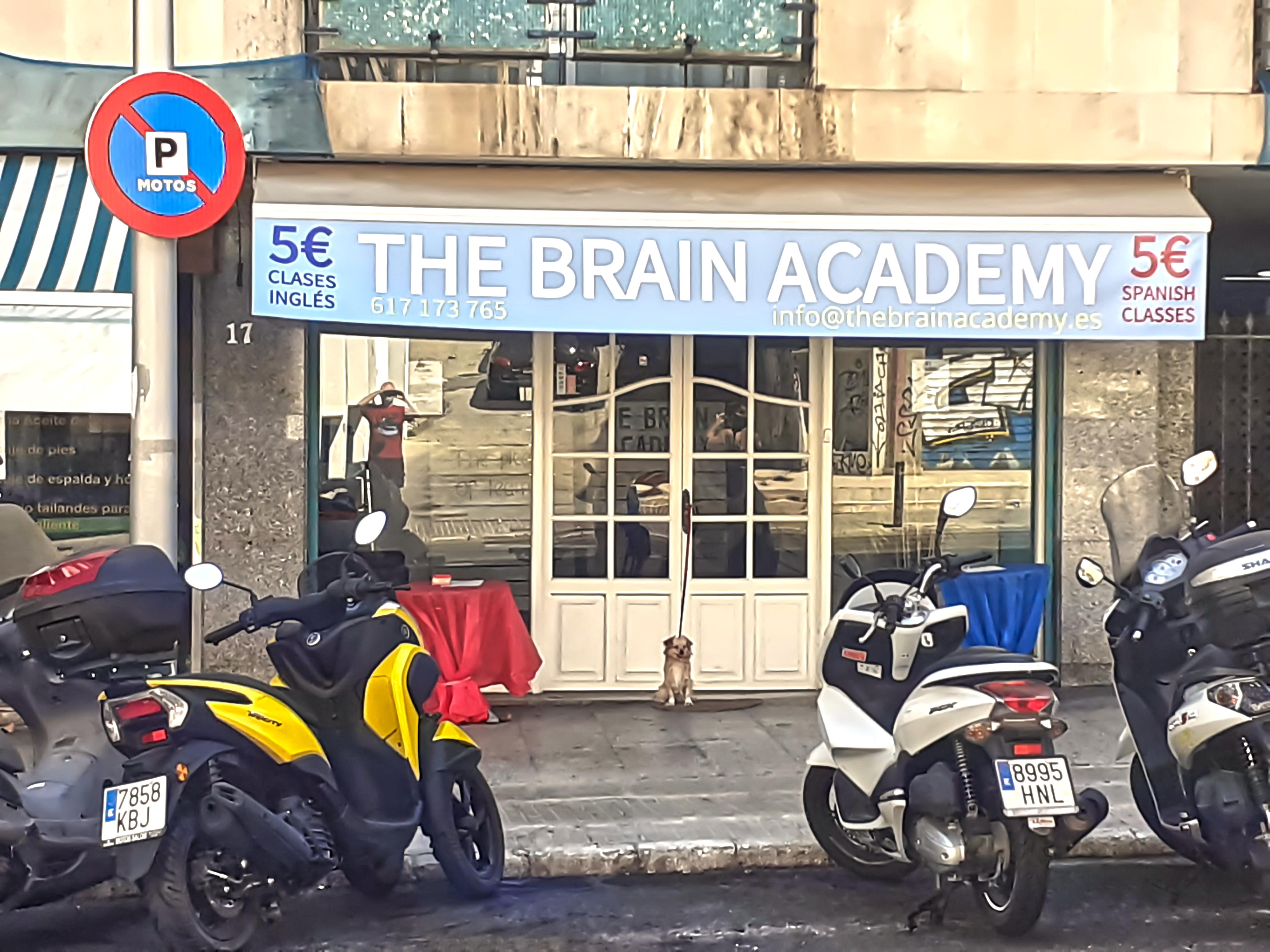THE BRAIN ACADEMY EN PALMA