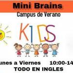 summer school The Brain academy Palma 2015